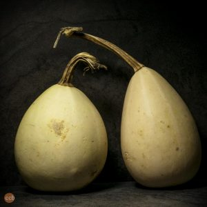 Egg Gourds